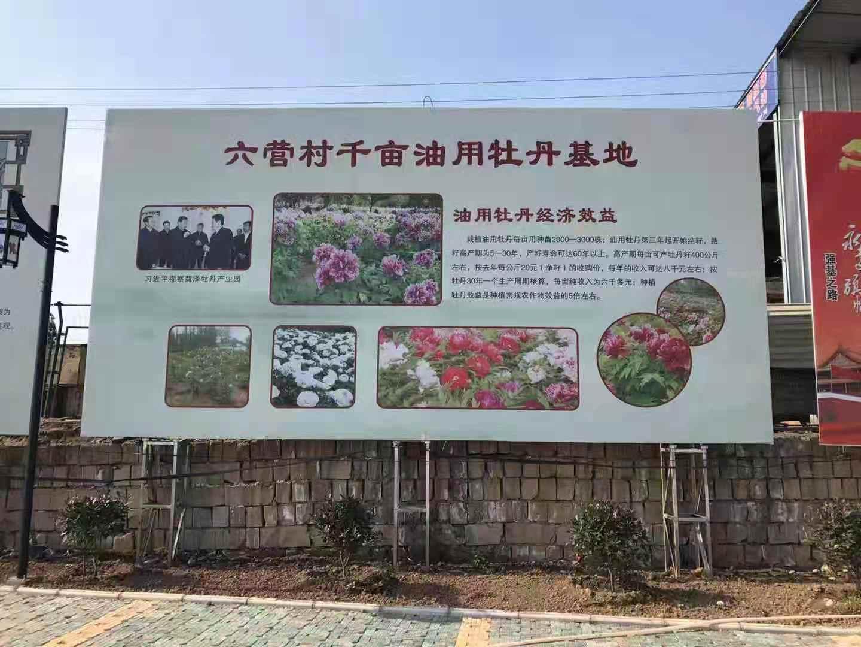 凤翔县六营民俗村中国泥塑园工程